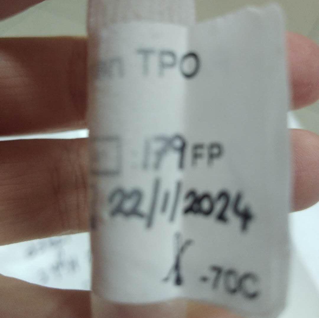 重组甲状腺过氧化物酶 High5