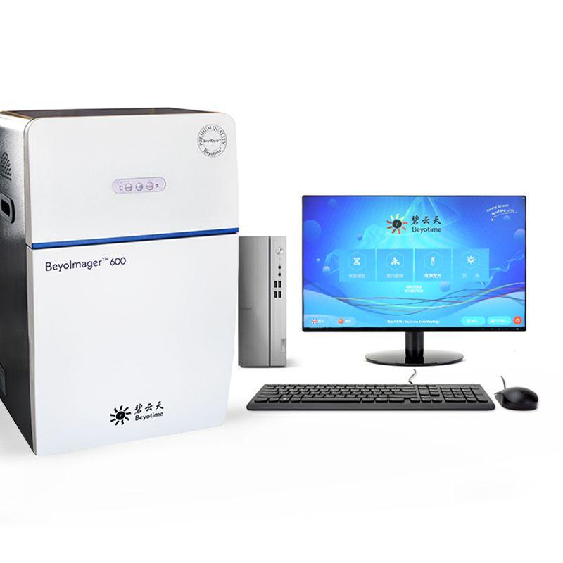 BeyoImager™ 600化学发光成像系统(含电脑)