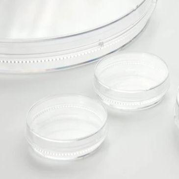 NUNC 6孔细胞培养板