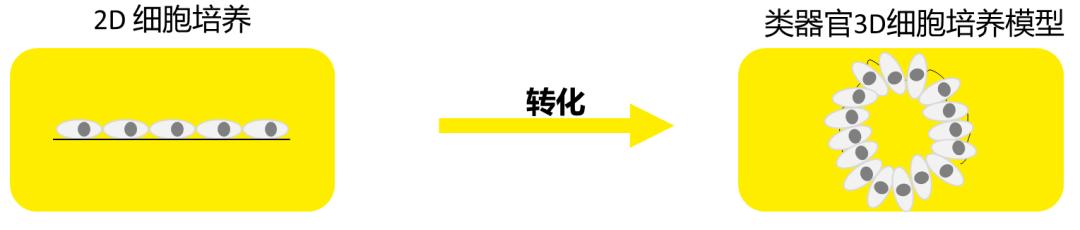 WeChat Image_20210831135943.jpg