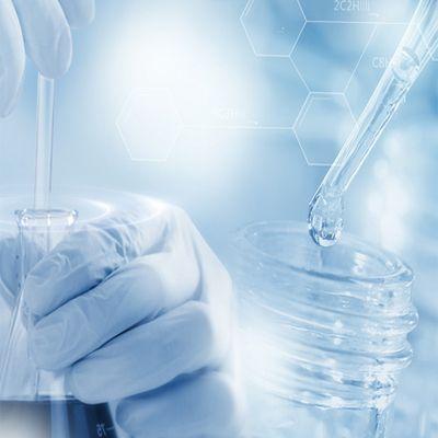 未知蛋白检测鉴定