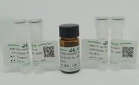 cy3 尸胺 荧光染料