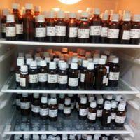 盐酸L-丙氨酸甲酯,2491-20-5