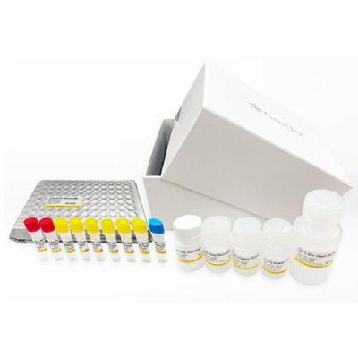 SARS-CoV-2 (COVID-19) Spike-ACE2 Binding / Neutralization Assay Kit