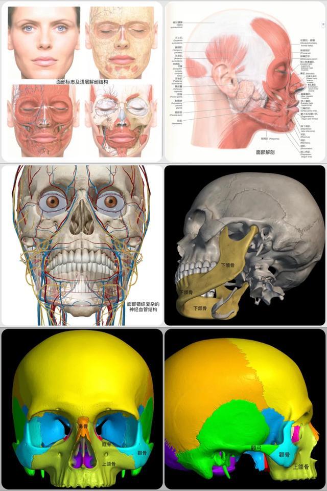 拯救颜值!口腔科成功开展颧骨多发性骨折重建手术