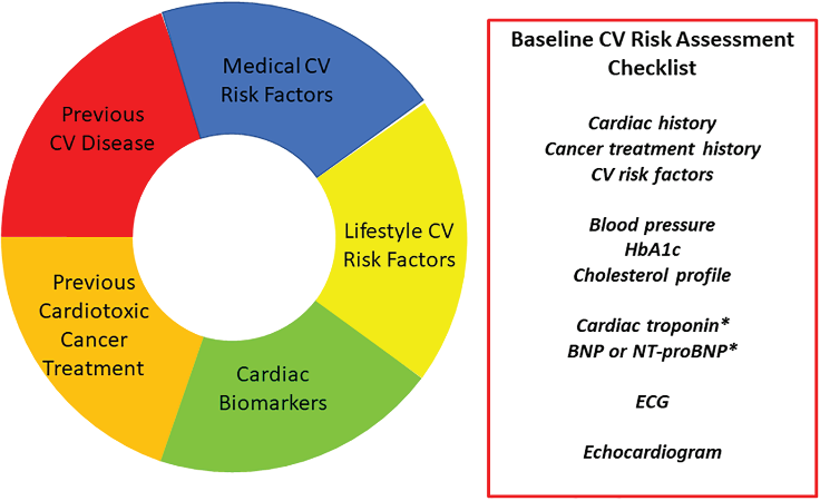 抗肿瘤化疗所致心脏毒性全程管理 嘉会肿瘤心脏病学术沙龙