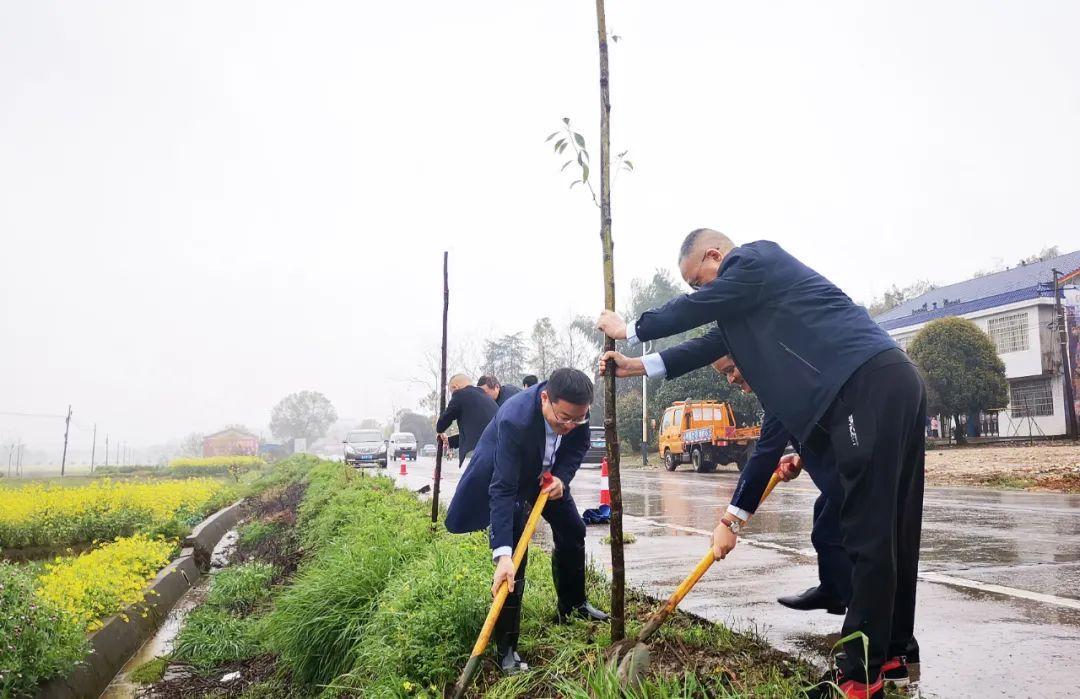 常德市第四人民医院开展春季植树活动