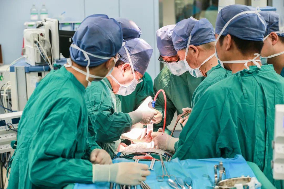 3D 打印椎体精准植入 让脖子重新「立」起来