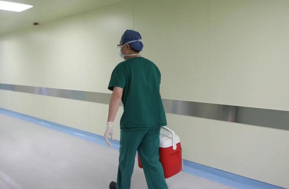 元旦假期,树兰(杭州)医院奋战14 台器官移植手术