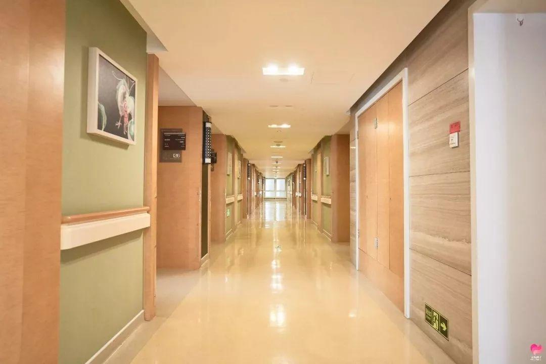 杭州美中宜和妇儿医院:「神兽」即将出笼,这个得给安排上