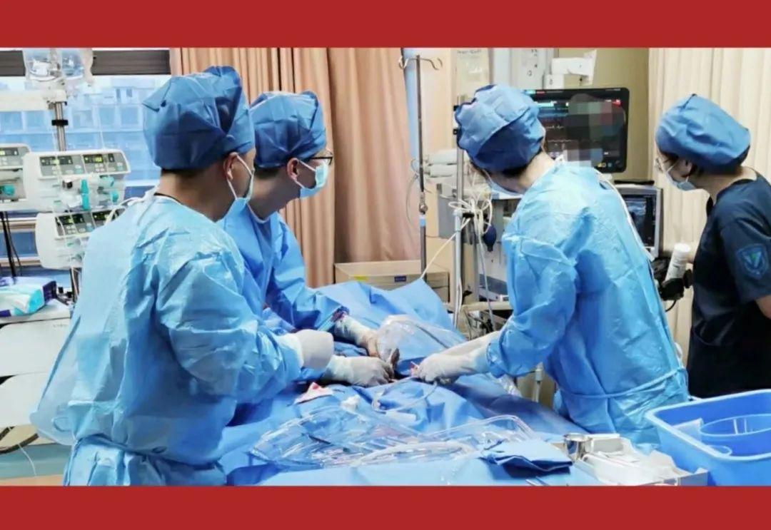 浙江大学医学院附属第四医院牛年第一台 ECMO 上机!为 ICU 团队点赞