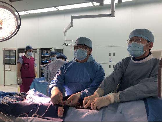 上海德达医院成功完成上海首例椎动脉药物洗脱支架植入手术