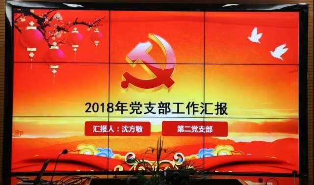 永康市妇幼保健院召开2018 年党建工作总结大会