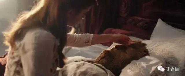 美女会爱上野兽,是因为她有「病」?!