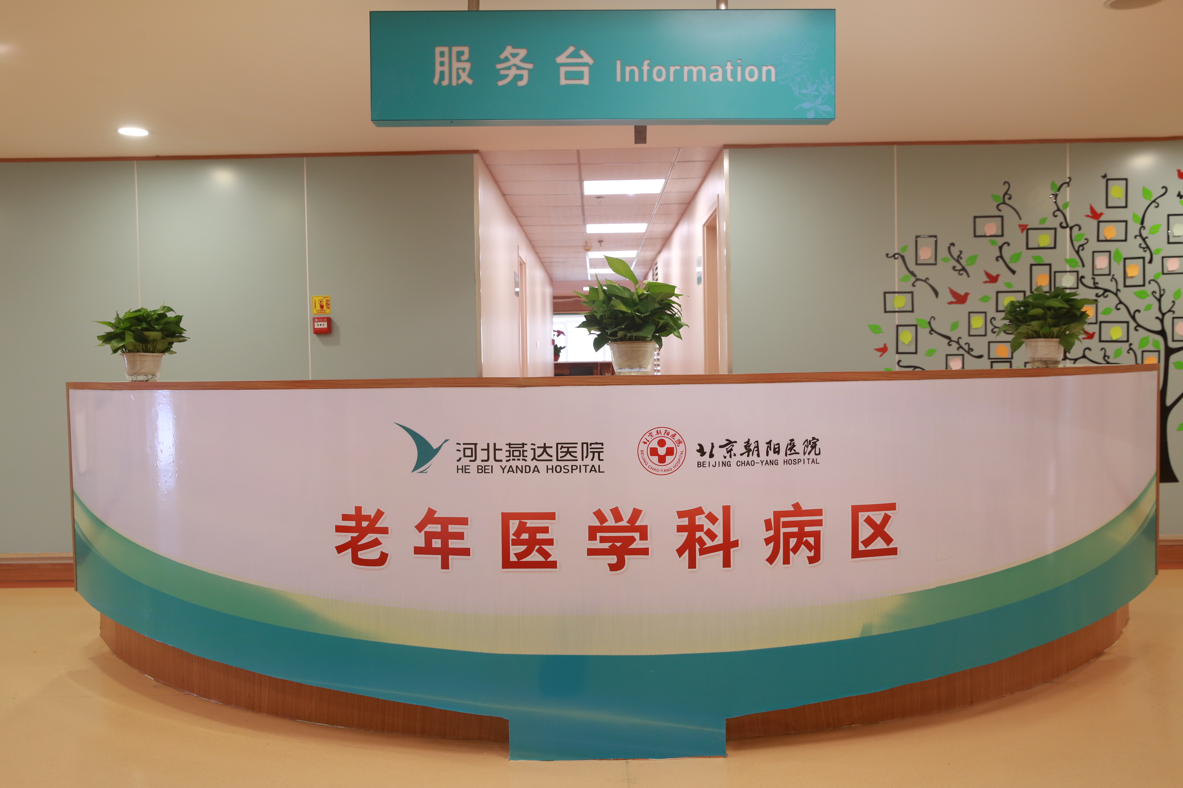 河北燕达医院老年医学科正式开科